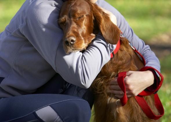 Собака прижимается к хозяину