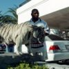 Майк Тайсон с бенгальским тигром